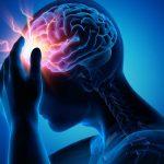 Cerebrolysin Review