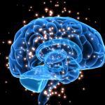 Cerebral