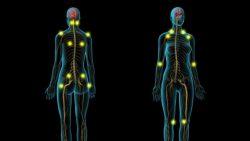 Helping with Fibromyalgia